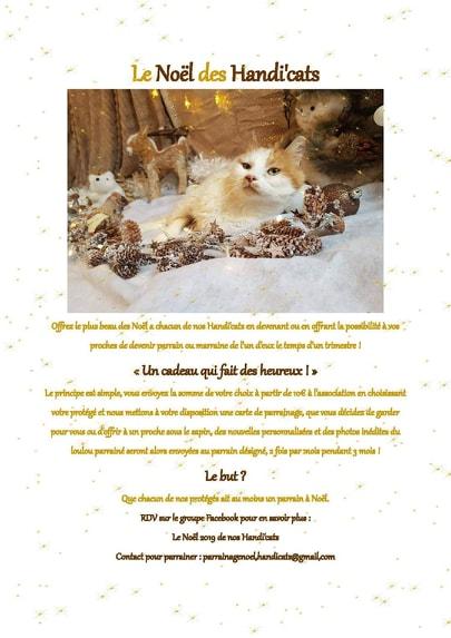 Le noël 2020 des Handi'Cats Noel10