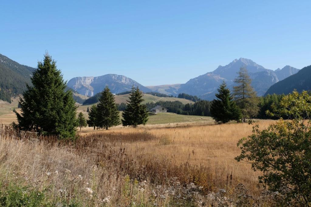Alpine 2018 infos et inscription - Page 2 Dscf5614