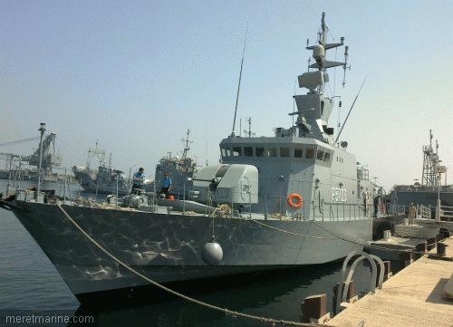 Armée Koweitienne/Kuwaiti Armed Forces 2877510