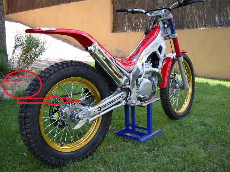 Superbe  MONTESA 315 Montes10