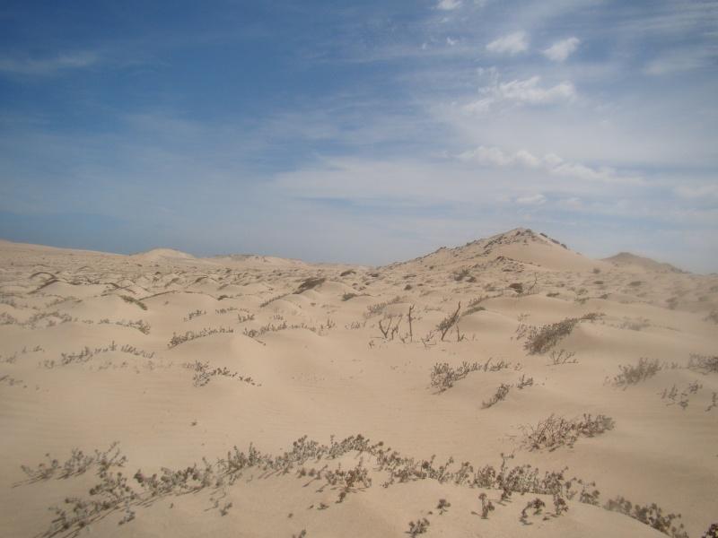 Maroc 2011 Dsc03211
