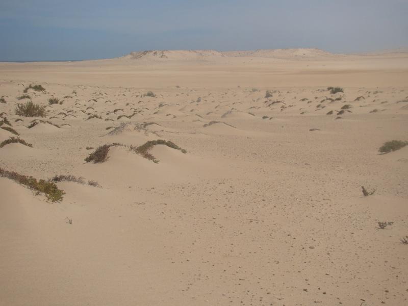 Maroc 2011 Dsc03213