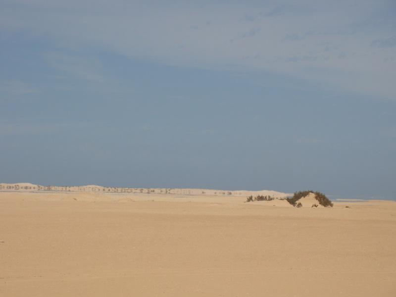 Maroc 2011 Dsc03218