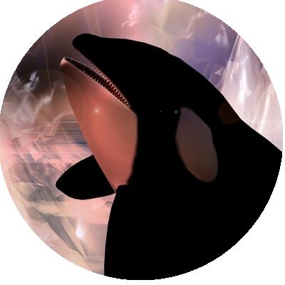 IMAGES DAUPHINS PINGOUINS... Ureuor10