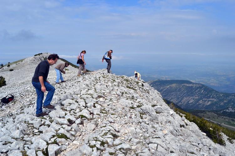 Davarrée au Mont Ventoux 2011