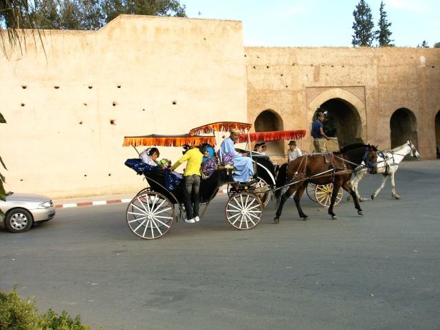 Meknès, la Ville Ancienne et les 2 Mellahs 1 316_ma10