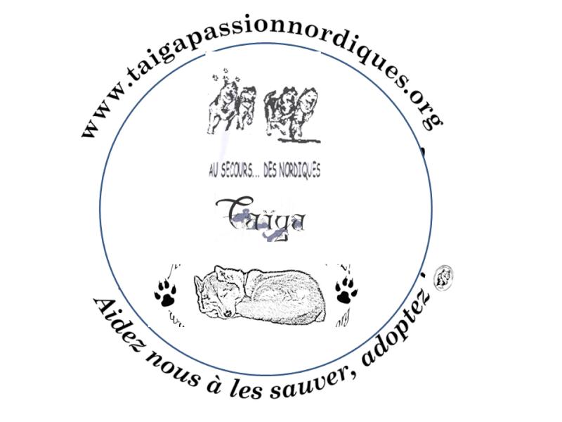 Vote : LOGO T-SHIRT TAIGA  -Cloture le 19 juin minuit-  Prasen24