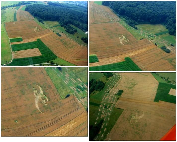 Anomalie dans un champ de blé à Rivières (16) - Page 2 Sl-02a10