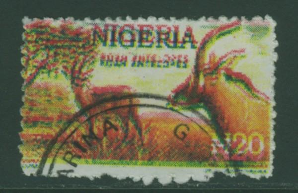Abstimmung für Mai 2011 Nigeri10