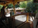 [Walt Disney World Resort] Mon Fabuleux voyage (13-31 Octobre 2010) Wdw_jo56