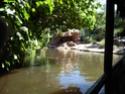 [Walt Disney World Resort] Mon Fabuleux voyage (13-31 Octobre 2010) Wdw_jo57