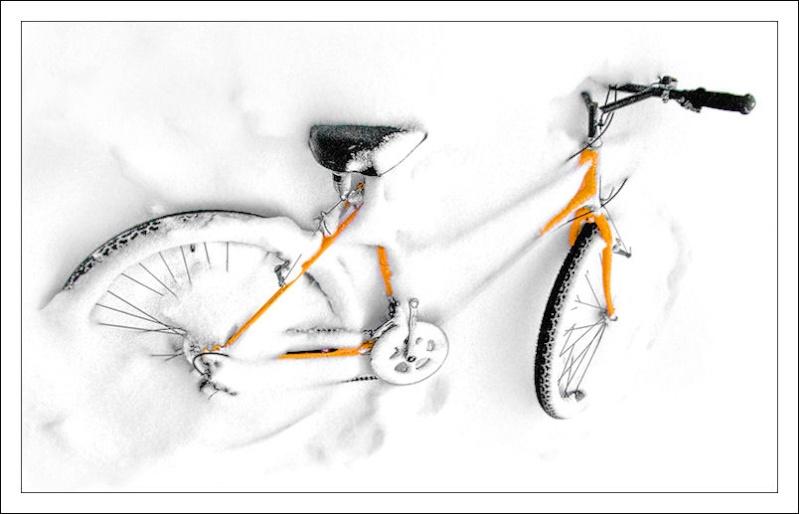 """""""La bicicletta nell'Arte"""" - Pagina 3 Immagi18"""