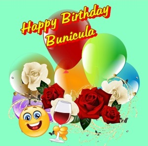 Happy Birthday Bunicula Cats12