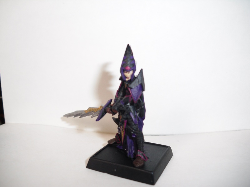 Dark Elf Arix Dirthe Hpim0610