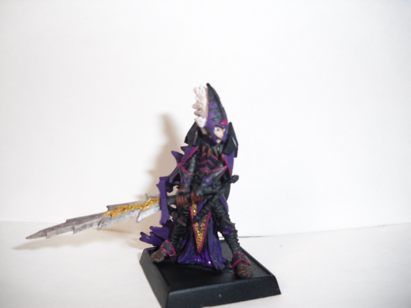 Dark Elf Arix Dirthe Hpim0611