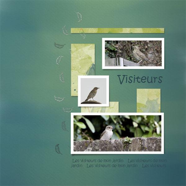 N°97 - C&S - Votes du 27/06 au 01/07 Oiseau10