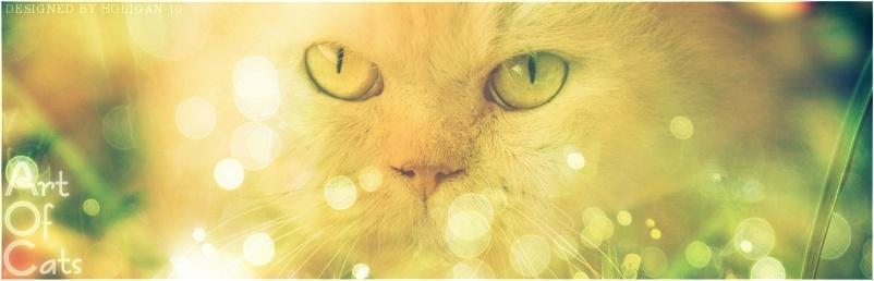 Art of Cats Bannlg10