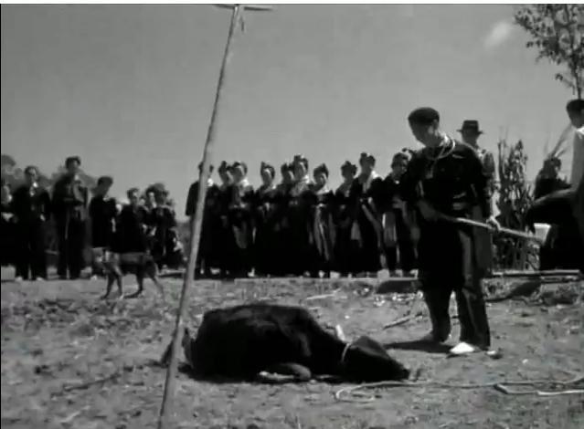 SAIB DUAB HMOOB QUB 194610