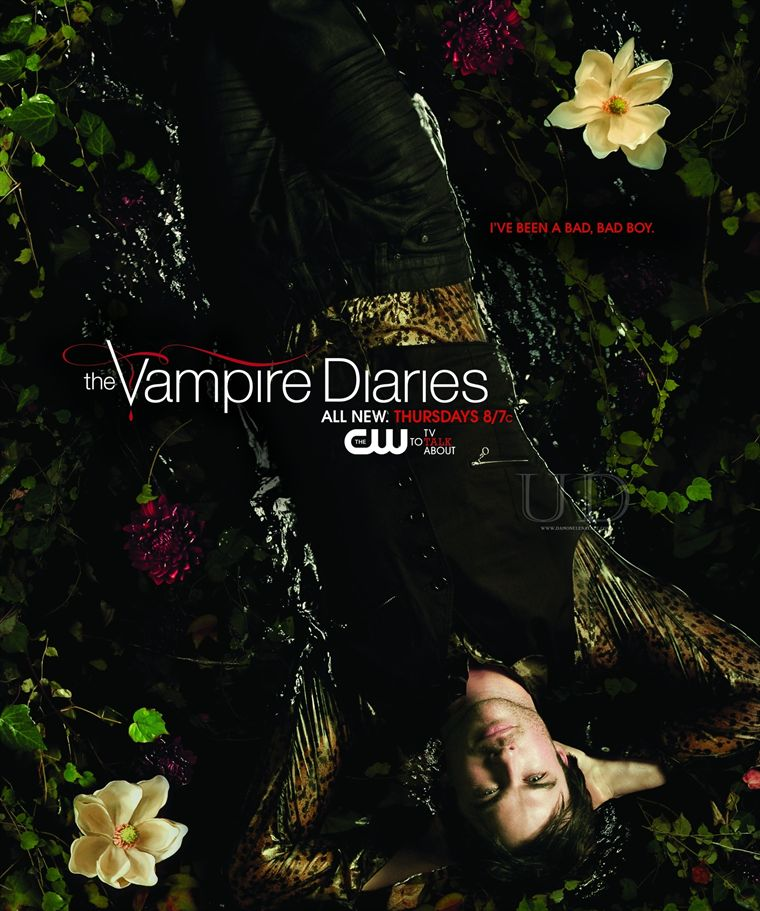 THE VAMPIRE DIARIES - Page 3 19713510