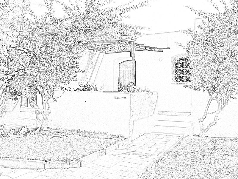 Créer un dessin à partir d'une photo (façon rapide) 211