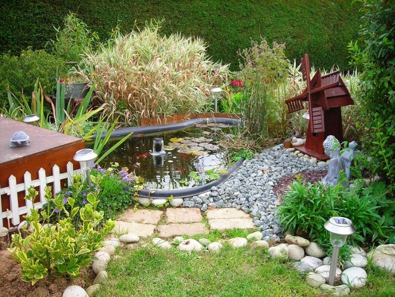 mon petit bassin de jardin 500 l photos page 2. Black Bedroom Furniture Sets. Home Design Ideas