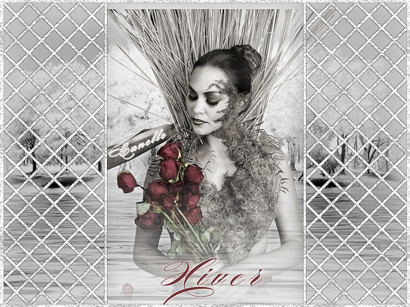 tag -HIVER- Hiver11