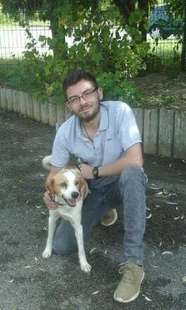 Caramel, mâle croisé épagneul breton 41991711