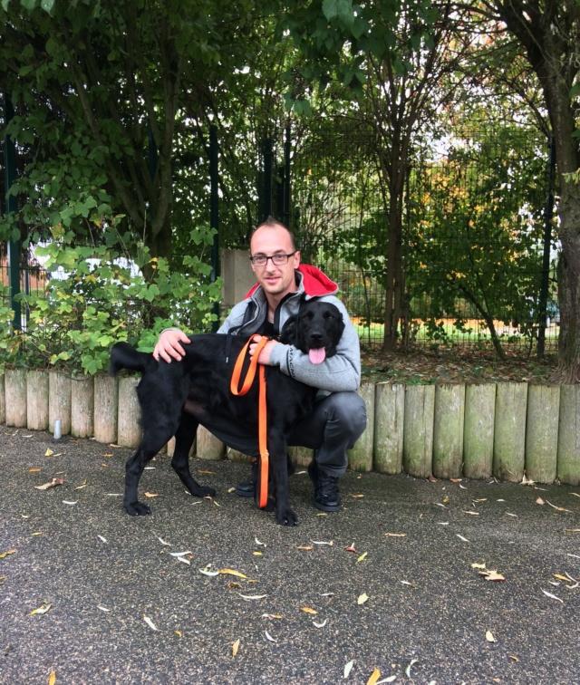 Owen, mâle croisé labrador noir Img_4610