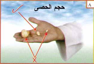 صفة الحج - راجعها فضيلة الشيخ عبدالله بن عبدالرحمن الجبرى ( حفظه الله ) 810