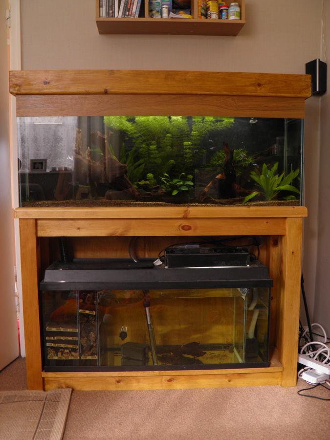 Large fish tank plus sump with RO and loads of stuff fishtank aquarium P6220010