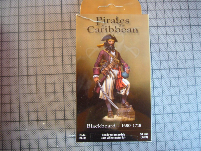 Piraten in der Karibik P1090733