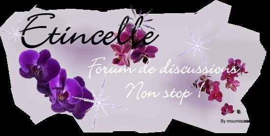 Etincelle ~ Forum de discussions non stop ! Code_p10