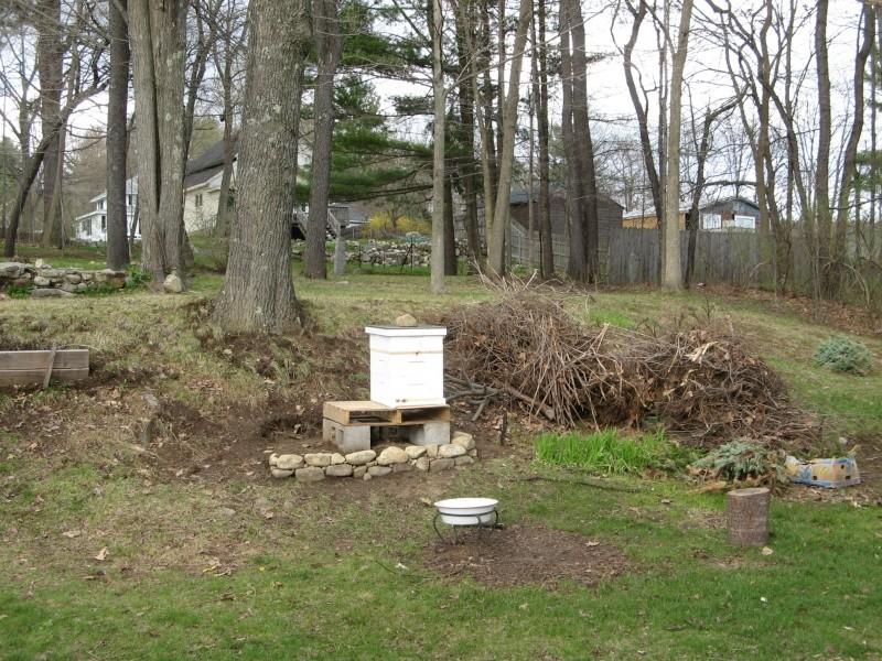 May 1st, New England Img_0011