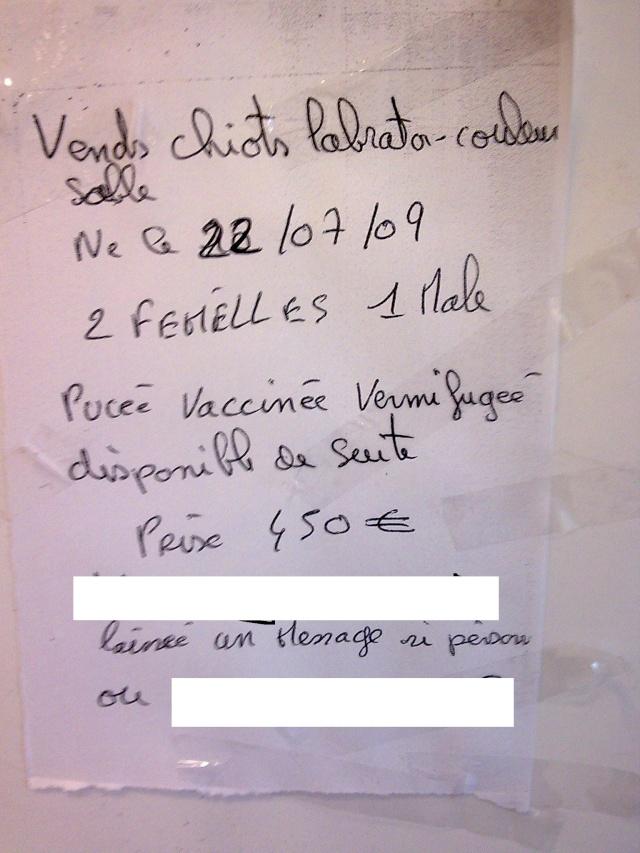 Spion.com : un panneau municipal de Bordeaux truffé de fautes.  Photo112