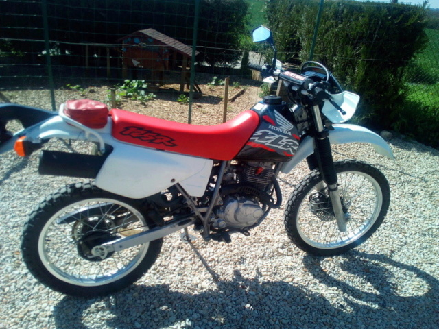 Evolution des :MONOCYLINDRES  HONDA 125  TRAIL 125_xl11