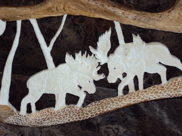 panache d'orignal sculpter (a voir ) 30713_30