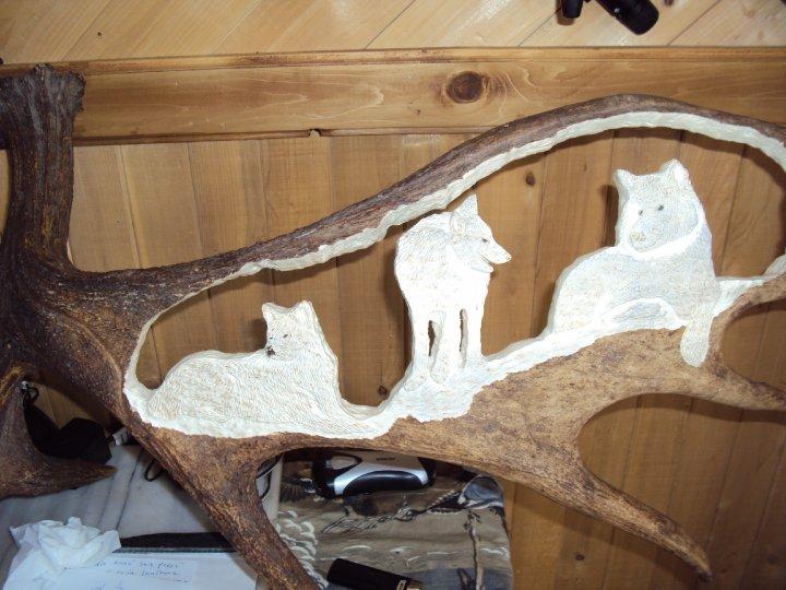 panache d'orignal sculpter (a voir ) 30713_31