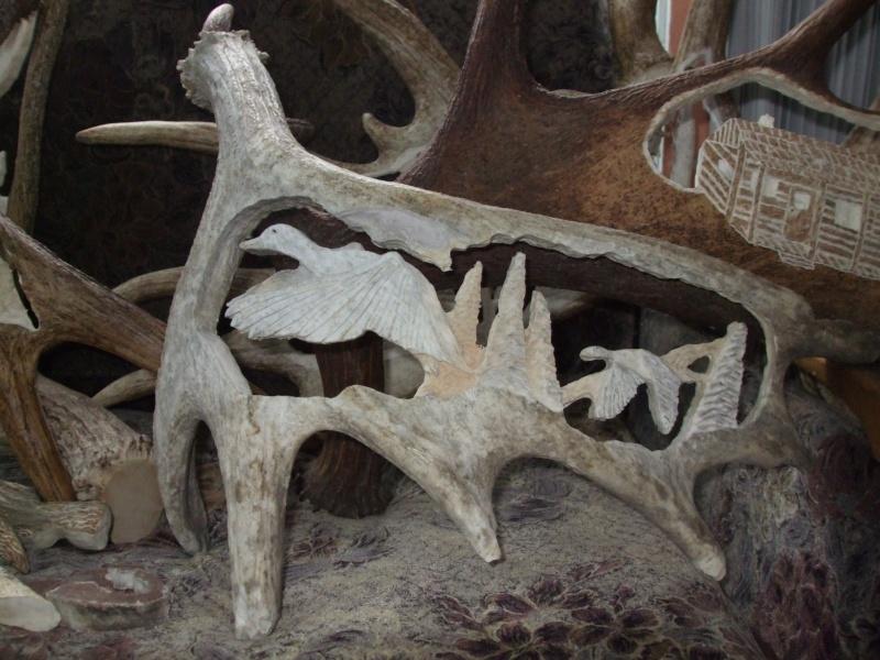 panache d'orignal sculpter (a voir ) Panach39