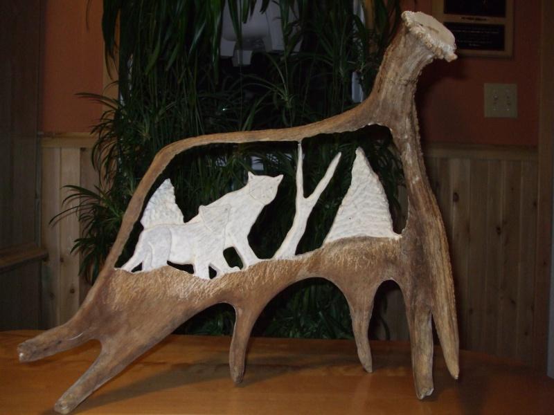 panache d'orignal sculpter (a voir ) Panach42