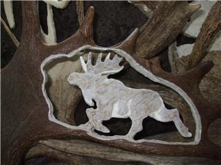panache d'orignal sculpter (a voir ) Panach50