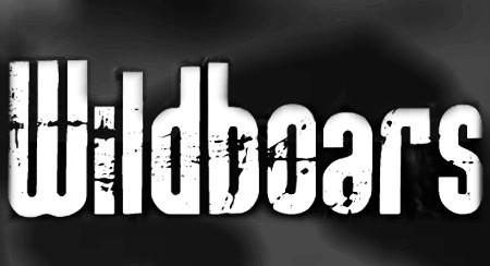 WILDBOARS (Tribute Iron Maiden & AC/DC) Wild011