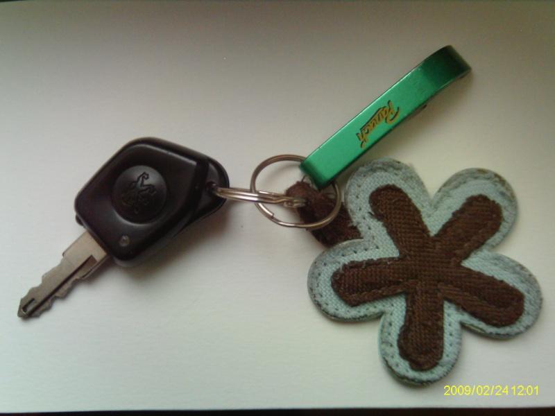Vos clés de voitures (toutes marques) Clas_310