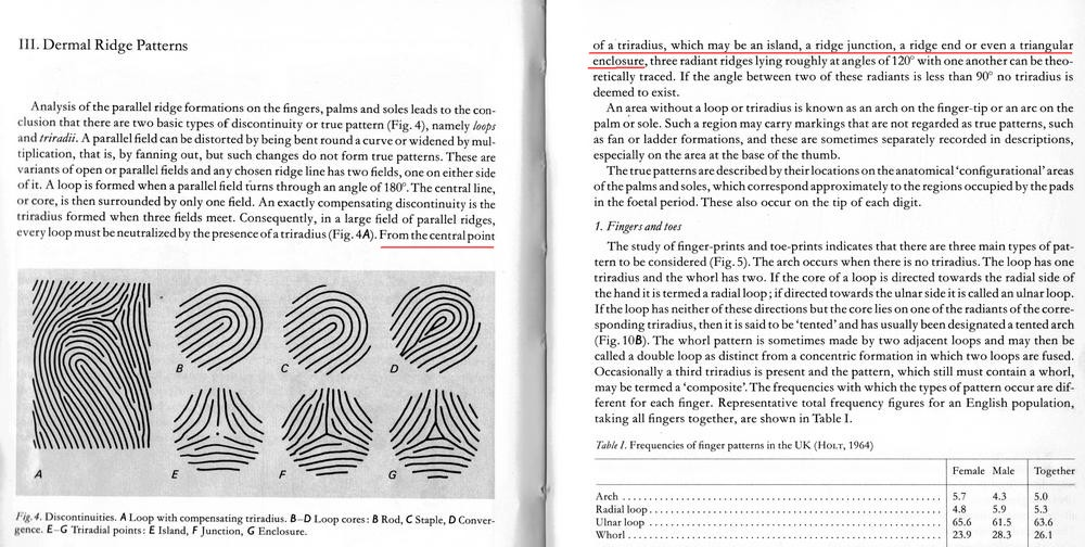 The TRIRADIUS in a fingerprint: how it develops, it's characteristics + a definition! - Page 15 Penros18