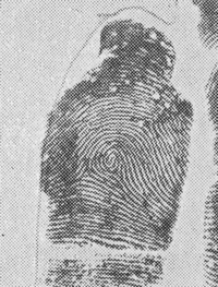 X - WALT DISNEY - One of his fingerprints shows an unusual characteristic! - Page 5 Right_10