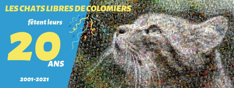 Chats Libres de Colomiers