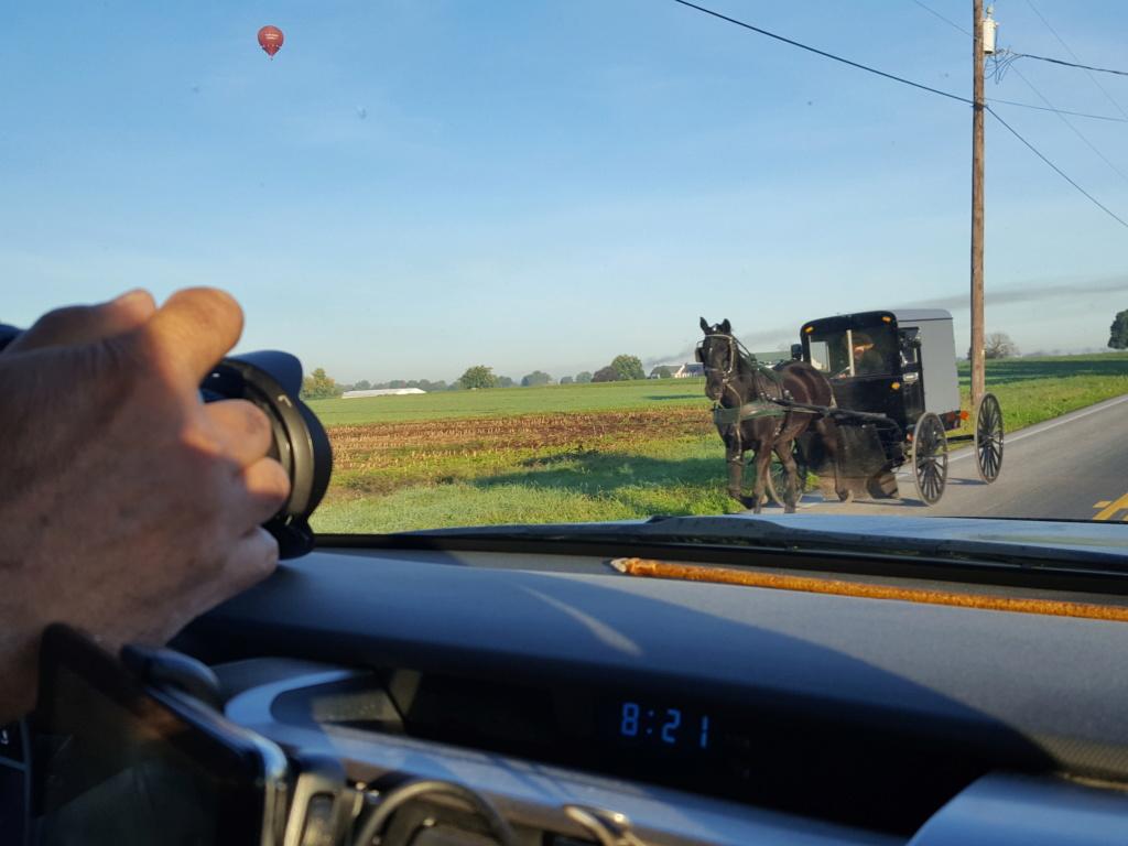 Coyote chez les Amish  20171010