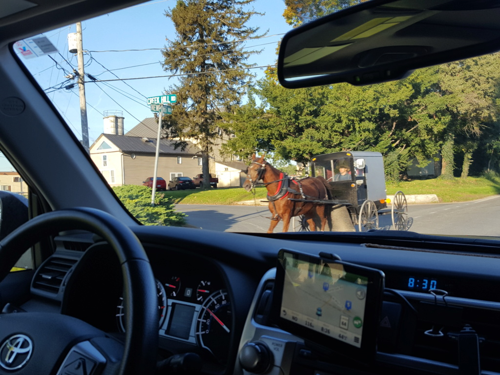 Coyote chez les Amish  20171014