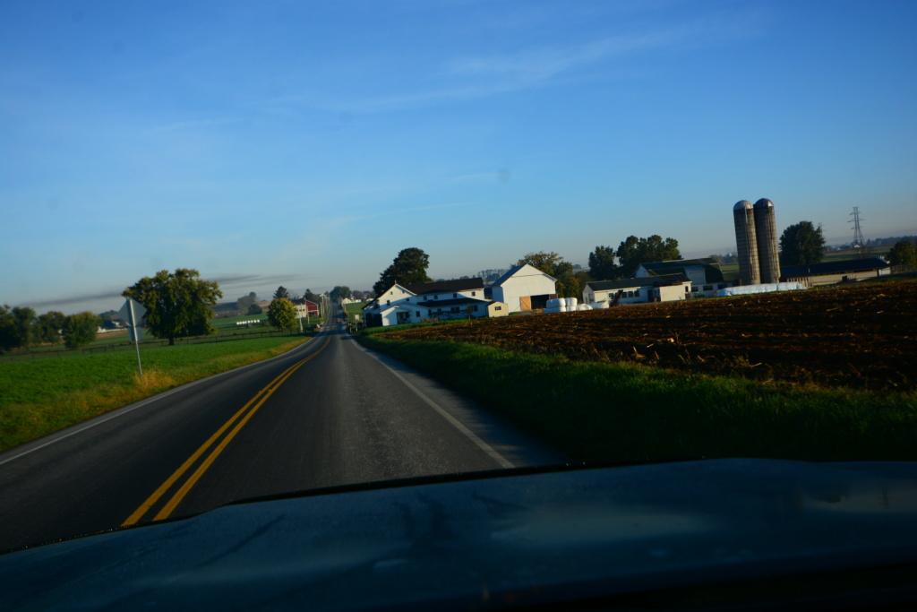 Coyote chez les Amish  Dsc_3012