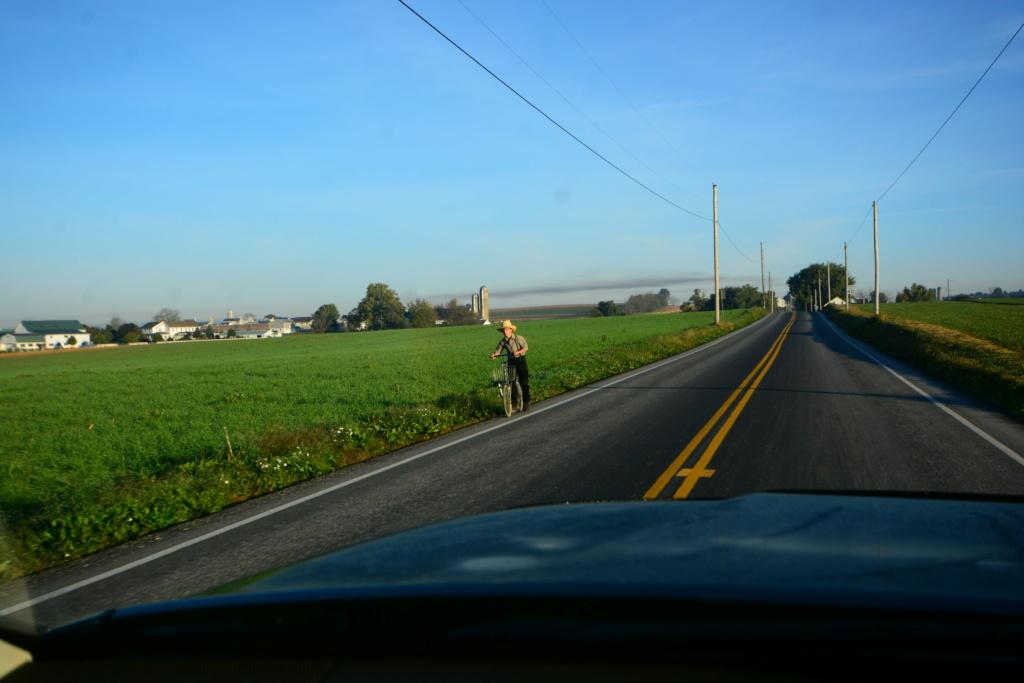 Coyote chez les Amish  Dsc_3014