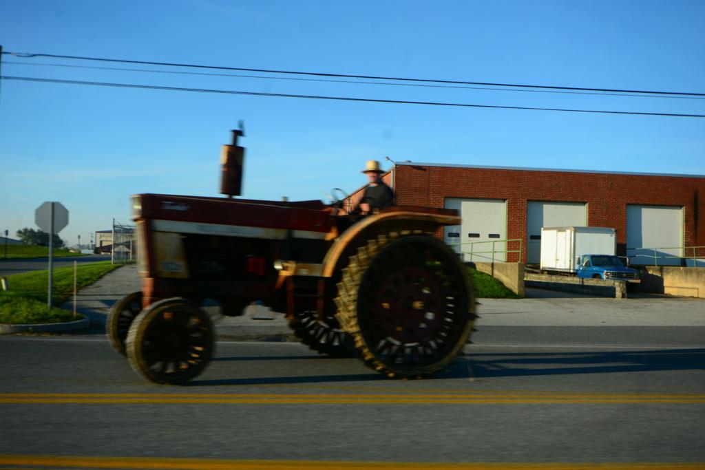 Coyote chez les Amish  Dsc_3016